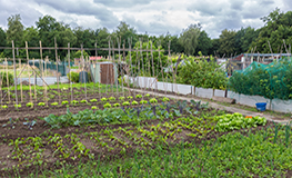 Notice to Allotment Holders  sumamry image